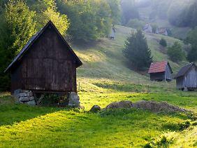 Der Schwarzwald hat seine idyllischen Seiten: Im Murgtal stehen an den Hängen oft traditionelle Heuhütten.