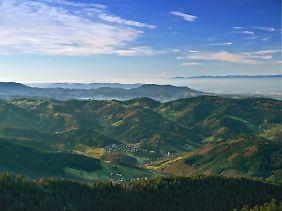 Viele Möglichkeiten zum Wandern, aber nichts für Konditionsschwache: Der Blick von der Hornisgrinde, dem höchsten Berg im nördlichen Schwarzwald, zeigt, was Wanderer in der Region erwartet.