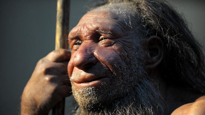 Neandertaler und Homo sapiens lebten zum Teil zur selben Zeit.