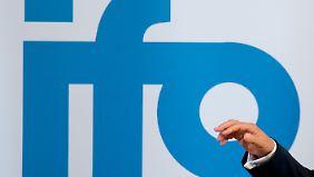 Der Präsident des Ifo Instituts für Wirtschaftsforschung, Hans-Werner Sinn