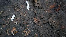 Fundsache, Nr. 1317: Azteken-Ballspielfeld neben Opferstätte