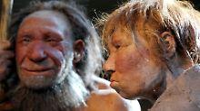 Liebten sich vor 100.00 Jahren: Neandertaler trug früh Homo-sapiens-Gene