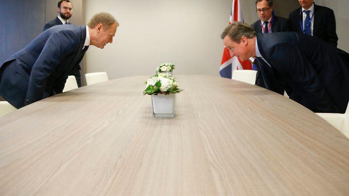 """Eigentlich wollen alle verhindern, dass es zu einem """"Brexit"""". Die Frage nur: Um welchen Preis. (Im Bild: Tusk und Cameron)"""