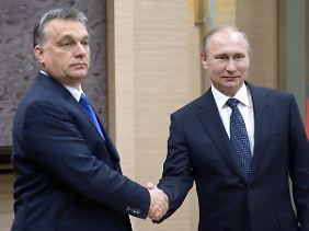 Verstehen sich offenbar: Ungarns Regierungschef Viktor Orban und Russlands Präsident Wladimir Putin.