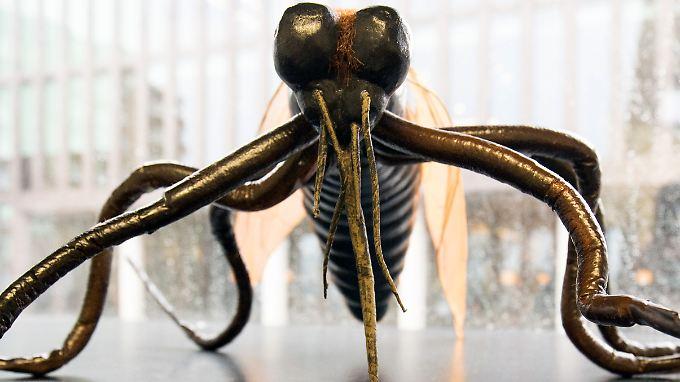 Der Übeltäter im Modell: Es sind vor allem Stechmücken, die das Zika-Virus übertragen.