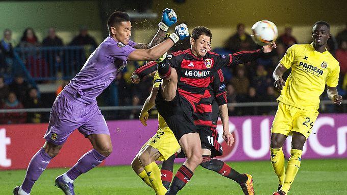Vergebliche Müh': Leverkusens Javier Hernandez.