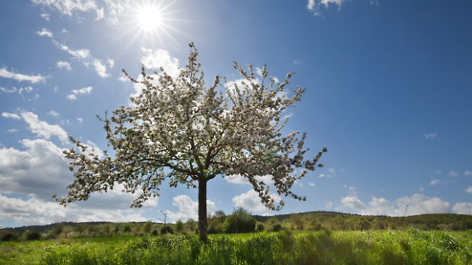 Bis der Frühling auch biologisch Einzug gehalten hat, vergehen noch einige Wochen.