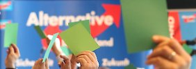 Rechts, aber nicht rechtsradikal: AfD macht Programmentwurf öffentlich