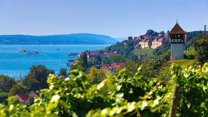 Die Fahrradtour rund um den Bodensee führt vorbei an alten Schlössern und durch Weinreben.