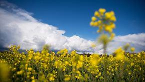 Verbreitet Ausflugswetter am Wochenende: April endet wechselhaft und mild