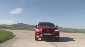 Heizen mit einem SUV: Jaguar F-Pace wildert auf Sportwagen-Terrain