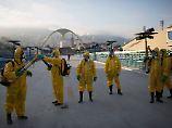 Meldepflicht in Deutschland: Robert-Koch-Institut erfasst zwölf Zika-Fälle