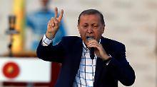 Özdemir soll zum Bluttest: Erdogan beschimpft deutsche Abgeordnete
