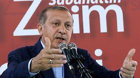 """Forderung nach """"Bluttest"""": Erdogan schießt gegen Özdemir und Co"""