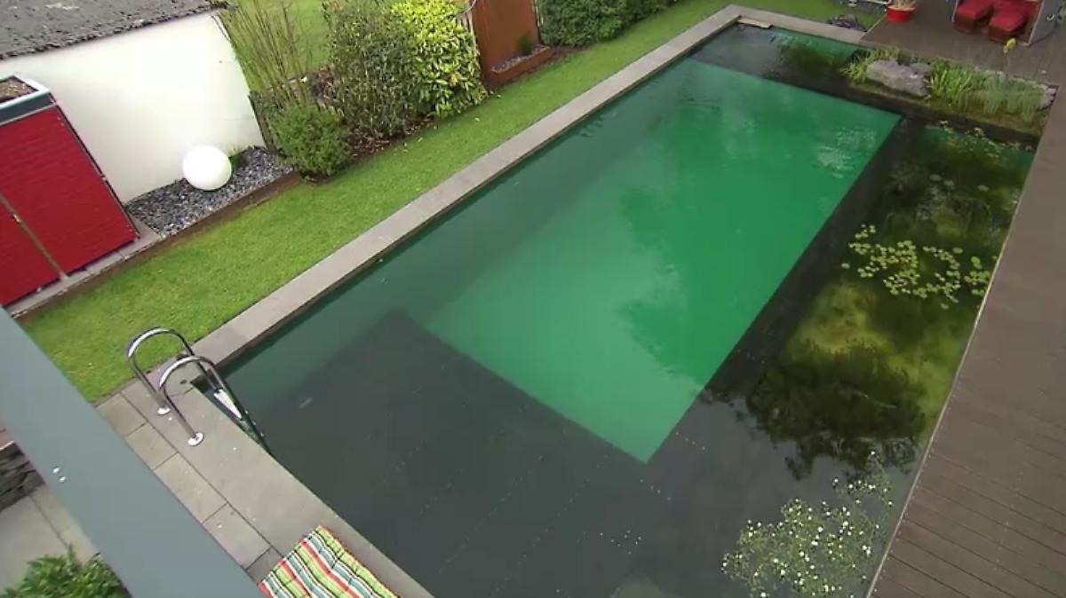 n tv ratgeber der schwimmteich als alternative zum pool n. Black Bedroom Furniture Sets. Home Design Ideas