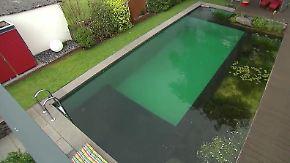 n-tv Ratgeber: Schwimmteich als Alternative zum Pool