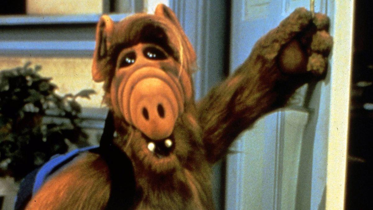 Darsteller Alf