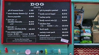 Gourmet-Essen für Vierbeiner: Food-Trucks für Hunde erobern die USA