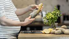 Schutz vor Übergewicht bei Kindern: Fischöl funktioniert nur bei Mäusen
