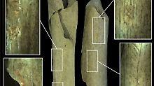 Klare Spuren an Knochen: Neandertaler waren Kannibalen