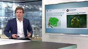 n-tv Netzreporter: Über diese olympischen Momente lacht und streitet das Netz