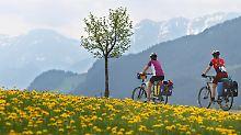 Kräftiger Tritt in die Pedale: Wie Fahrradfahrer die Wirtschaft ankurbeln