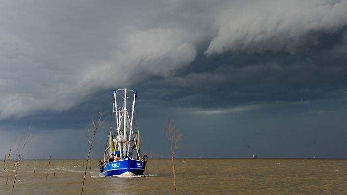 Forscher warnen auch vor den Auswirkungen des Klimawandels auf Küsten.