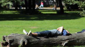 Mit sommerlichen Temperaturen: Sonne macht sich über Deutschland breit