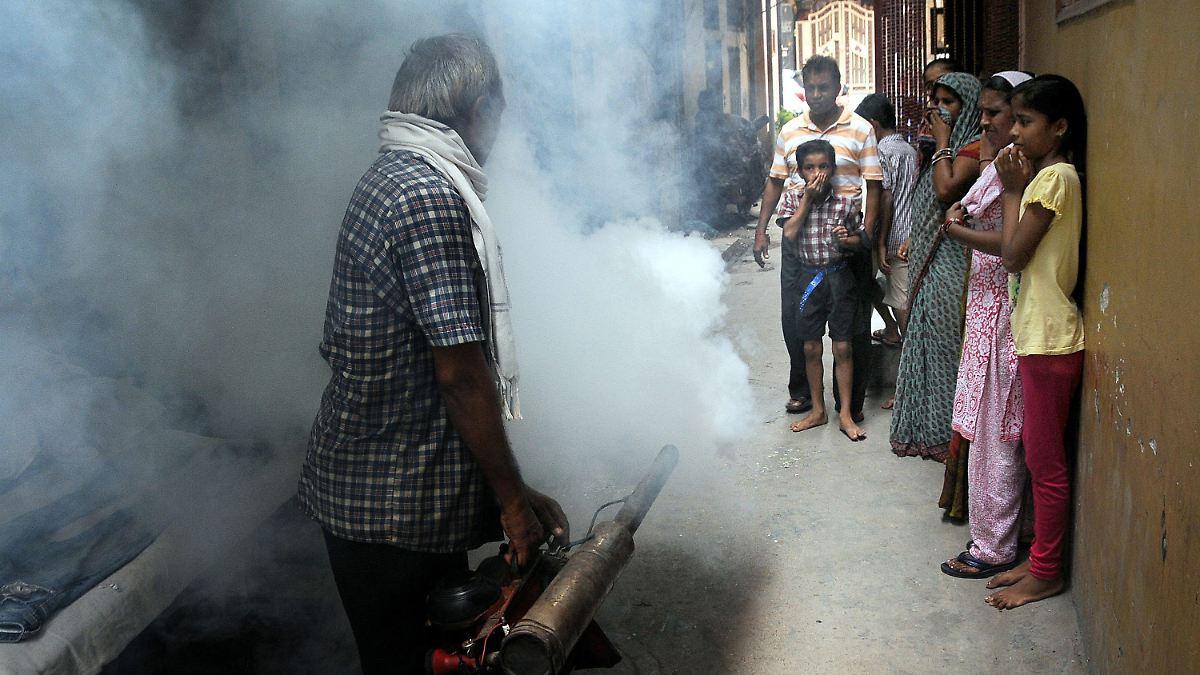 vernebelung gegen m cken invasion neu delhi k mpft gegen dengue fieber n. Black Bedroom Furniture Sets. Home Design Ideas