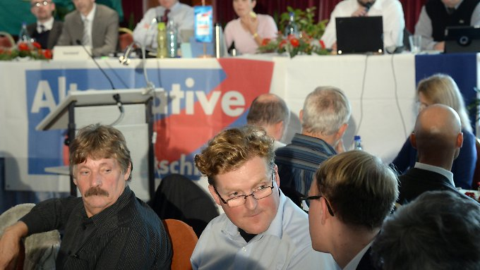 """Samtleben (vorne Mitte) wäre """"eine Zumutung für die AfD-Mitglieder und vor allem für die Wähler der AfD gewesen"""", begründet Frauke Petry den Eingriff in die Liste zur Landtagswahl."""