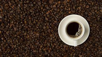 Heißbegehrte Spezialisten: Baristas machen Kaffee zum Genuss