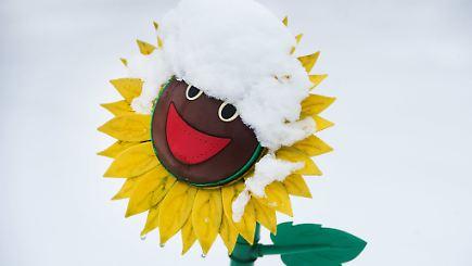 aus regen wird schnee diese woche klopft der winter an n. Black Bedroom Furniture Sets. Home Design Ideas