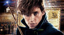 """Redmayne als Potter-Nachfolger: """"Als würde J.K. Rowling mich umarmen"""""""