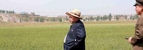 Irgendwer hat mal behauptet, grün und blau ginge gar nicht. Grüner Reis, blauer Zweiteiler - passt doch. Den ernsten Blick eines guten Models beherrscht Kim zudem wie Kate Moss zu tiefster Magersuchtzeit.