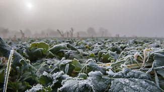 Mittwoch lacht im Süden die Sonne: Nachts wird's mit Nebel und Frost ungemütlich