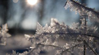 Kaiserwetter auf den Bergen: Frost hat Deutschland weiterhin im Griff