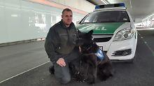 Rauschgiftspürhund schlägt an: 81-Jähriger versteckt 4,5 Kilogramm Kokain