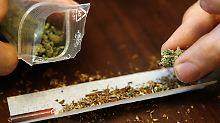Im Fokus steht die Droge Cannabis.