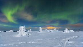 Urlaub unterm Polarlicht: In Lappland werden Wintermärchen wahr