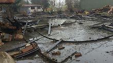 120.000-Liter-Tank geborsten: Gülleflut ergießt sich in Dorf