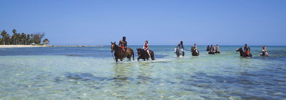 """Der Reitsport auf Jamaika ist den Briten zu verdanken: der """"Half Moon Stall"""" war das Winterquartier von Mark Phillips und Prinzessin Anne. Heute führen die Reitausflüge nicht nur am Strand entlang, sondern auch ins Meer."""
