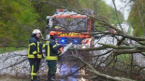 """Umgestürzte Bäume, lahmgelegte Züge: Sturmtief """"Thomas"""" fegt über Deutschland hinweg"""