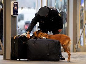 Die Koffer eines Reisenden auf dem Berliner Hauptbahnhof werden nach Sprengstoff untersucht.