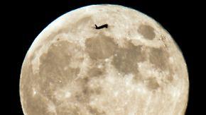 Flug für 2018 geplant: SpaceX will zwei Touristen um den Mond fliegen