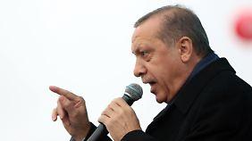 """""""Eine Bananenrepublik"""": Erdogan beschimpft die Niederlande"""