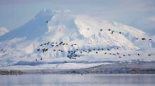 Russisch-Amerika: Alaska gehört seit 150 Jahren den USA