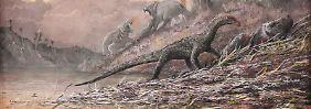 Fund füllt große Lücke: Fehlendes Bindeglied in Evolution entdeckt