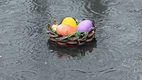 Schlechte Aussichten: Osterhase bekommt nasse Füße