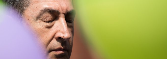 Partei in der Krise: Der eine Star, den die Grünen haben