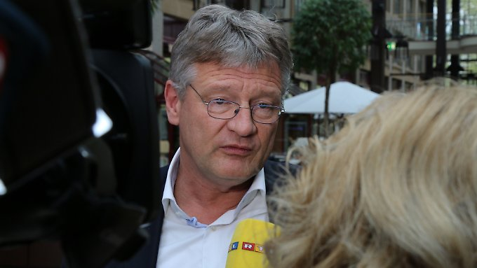 AfD-Chef Jörg Meuthen hält Co-Vorsitzende Frauke Petry für austauschbar.